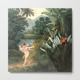 Cupid : New Illustration Of The Sexual System Metal Print