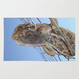 Chameleon Understudy Rug