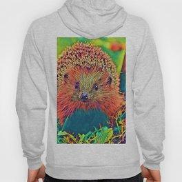 AnimalColor_Hedgehog_002_by_JAMColors Hoody
