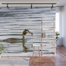 Great crested grebe and its catch Wall Mural