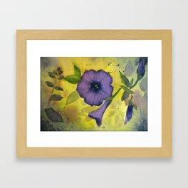 Purple Petunias Framed Art Print