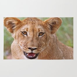 the young lion, Africa wildlife Rug