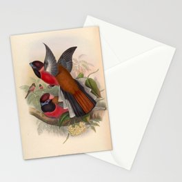 Vintage Birds Of Asia Harpactes Diardi Stationery Cards