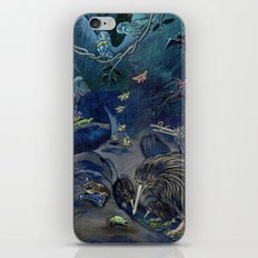 Kiwi, Bats, Morepork and More iPhone & iPod Skin