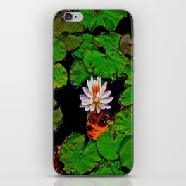 From the Lilypads iPhone Skin