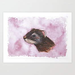 Original Watercolour and Ink Polecat Art Print