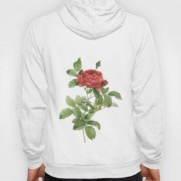 Vintage Red Rose [12] Hoody