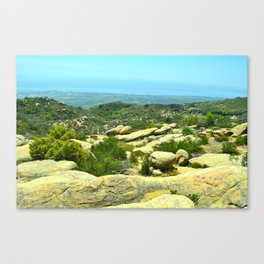 A Lizards Mouth Canvas Print