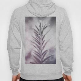 photo leafs #photography #botanical Hoody
