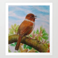 A Brown Bird Art Print