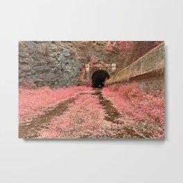Paw Paw Tunnel - Pink Netherworld Metal Print