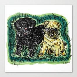 2 pugs Canvas Print