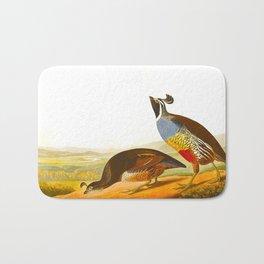 Scientific Bird Illustration Bath Mat