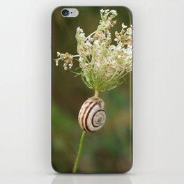 summersnail iPhone Skin