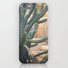 Cactus Jungle II iPhone 6s Slim Case
