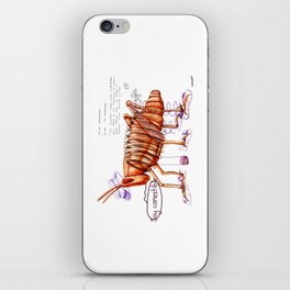 Chapulín comestible. iPhone Skin