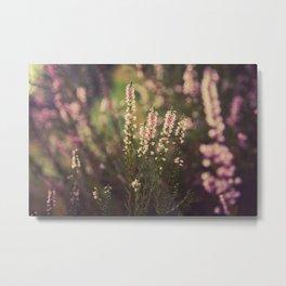 Field of Flowers 05 Metal Print