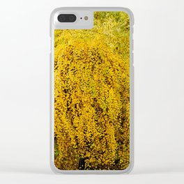 Weeping Tree Clear iPhone Case