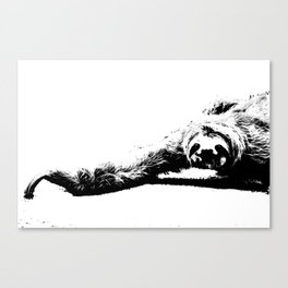 A Smiling Sloth Canvas Print