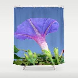 Mauve Morning Glory Against Cerulean Sky Shower Curtain