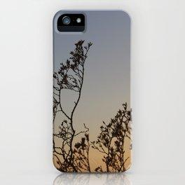 Desert Sunset Heat iPhone Case