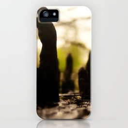 Monoliths of the Swamp iPhone Case