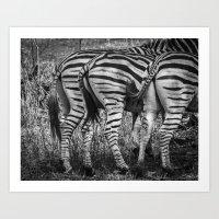 """Zebra """"rear view"""" Art Print"""
