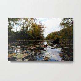 Color River Metal Print