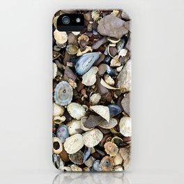 Seashells on the Ring of Kerry iPhone Case
