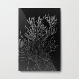 Sticks on Sticks Metal Print