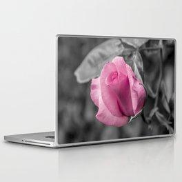Passion Pink Laptop & iPad Skin