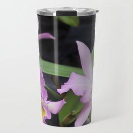 Cattleya Horace Maxima Orchid Travel Mug