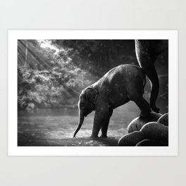 Baby elephant with mother Art Print