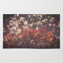 Red autumn Rug