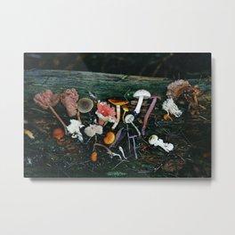 Little Mushrooms II Metal Print