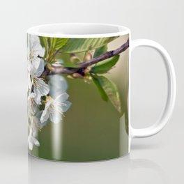 White Apple Blossoms Coffee Mug