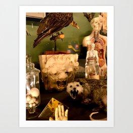 Curious Beasts Art Print