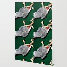 Parrot swing Wallpaper