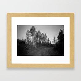 Polar day in the woods   35 mm film   Fine Art Framed Art Print