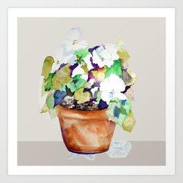 Pots of Petunias Art Print