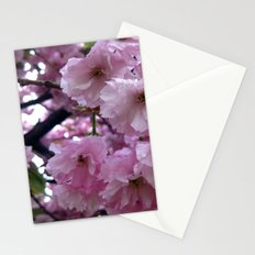 Pink Blossom Stationery Cards