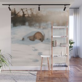 Footsteps In Snow | Winter Photography | Winter Scene With Footsteps In Snow  Wall Mural
