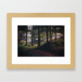 The color dance Framed Art Print