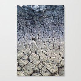 Nature's building blocks Canvas Print