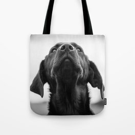 Heaven's above! Tote Bag