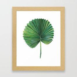 Tropical Palm 1 Framed Art Print