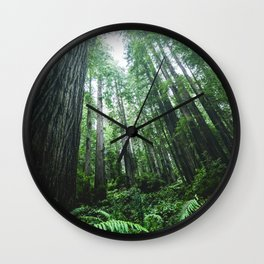 Redwood National Park- Pacific Northwest Nature Photography Wall Clock