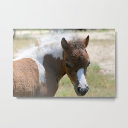 Heart Stealer Metal Print