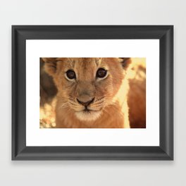 And Some People Think Animals Don't Have Souls... Framed Art Print
