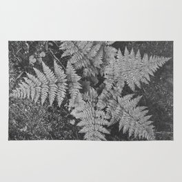 Ansel Adams - Close-up of Fern at Glacier National Park Rug